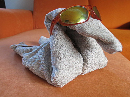 Handtuchschwan