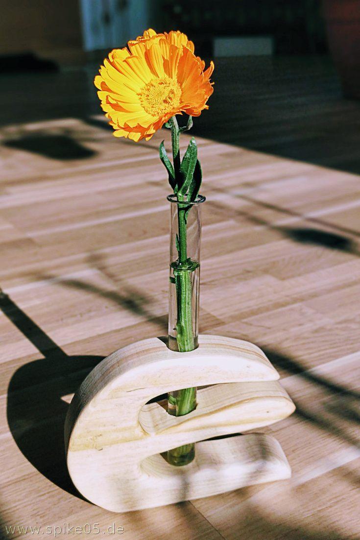 Vase aus Holz mit Reagenzglas DIY