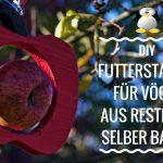 Futterstation für Vögel aus Restholz selber bauen – 4 Versionen
