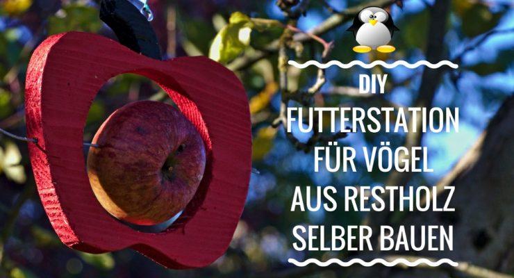 Artikelbild Futterstation Meisenknödelhalter Futterhalter für Vögel selber bauen DIY