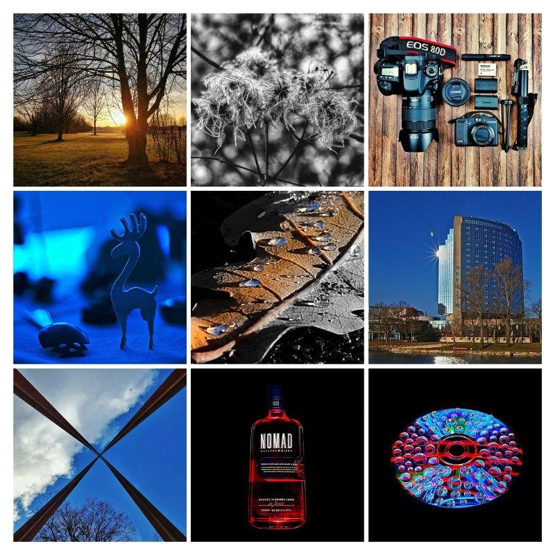 365 Tage Foto Challenge die ersten 30 Tage