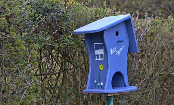 Artikelbild Vogelhaus mit Nistkasten