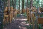 Allgäu Wald der Kreuze