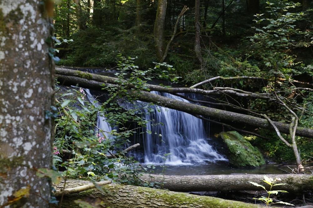 Wasserfall Welzheim Drei Schluchten Wanderung